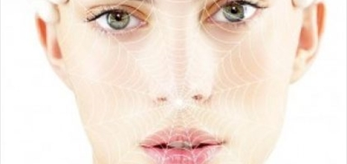 Spider Web Aesthetic Face Lifting Cog & Pdo Course